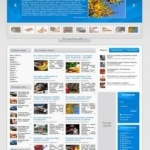 Тема для wordpress Directory News