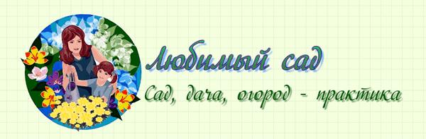 стоимость логотипа для сайта