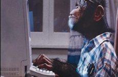 Джо Витале. История об обезьяне…